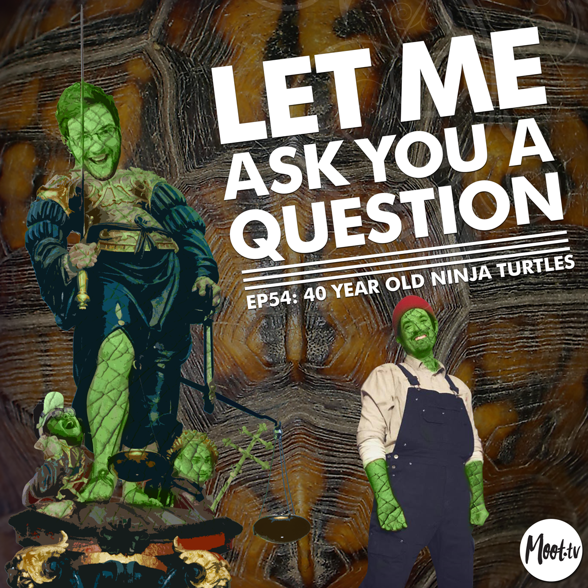 Let Me Ask You A Question Ep54: 40 Year Old Ninja Turtles